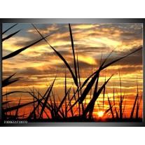 Foto canvas schilderij Zonsondergang | Zwart, Grijs, Geel