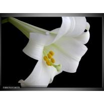 Foto canvas schilderij Bloem | Wit, Zwart, Geel