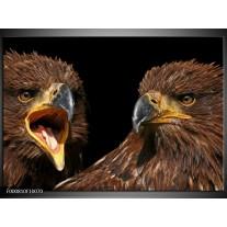 Foto canvas schilderij Vogels | Geel, Bruin, Zwart