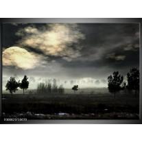 Foto canvas schilderij Maan | Zwart, Geel, Grijs