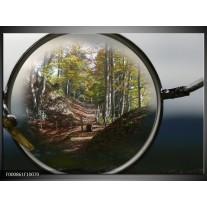 Foto canvas schilderij Vergrootglas   Grijs, Groen