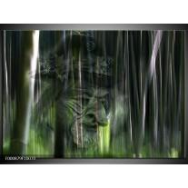 Foto canvas schilderij Abstract | Groen, Zilver, Wit
