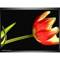 Foto canvas schilderij Bloem | Rood, Groen, Zwart
