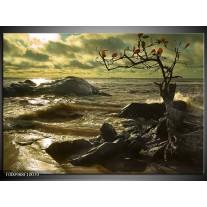 Foto canvas schilderij Natuur | Groen, Grijs