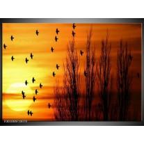 Foto canvas schilderij Vogels   Geel, Zwart