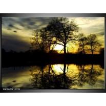 Foto canvas schilderij Natuur | Groen, Geel, Grijs