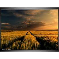 Foto canvas schilderij Landschap | Geel, Bruin