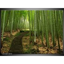 Foto canvas schilderij Landschap | Groen, Wit