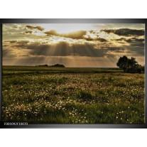 Foto canvas schilderij Landschap | Groen, Grijs