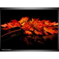 Foto canvas schilderij Herfstblad | Rood, Zwart, Oranje