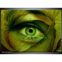 Foto canvas schilderij Oog | Groen, Bruin
