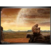 Foto canvas schilderij Aap | Bruin, Oranje