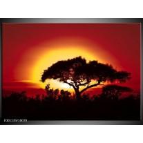 Foto canvas schilderij Zonsondergang | Zwart, Geel, Rood