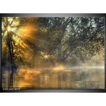Glas schilderij Natuur | Grijs, Wit