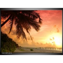 Foto canvas schilderij Palm | Geel, Paars, Wit