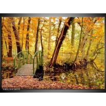 Foto canvas schilderij Natuur   Geel, Bruin, Groen