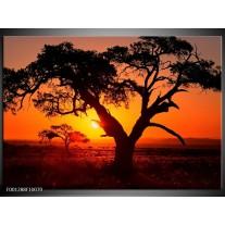 Foto canvas schilderij Zonsondergang   Zwart, Geel, Rood