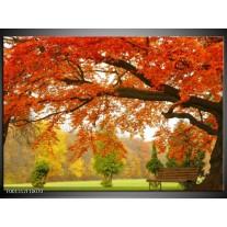 Foto canvas schilderij Herfst | Oranje, Groen, Geel