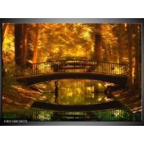Foto canvas schilderij Natuur | Bruin, Geel, Goud