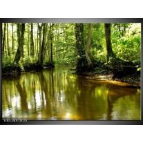 Glas schilderij Natuur | Groen, Bruin