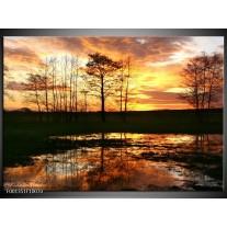 Foto canvas schilderij Natuur   Geel, Zwart, Oranje