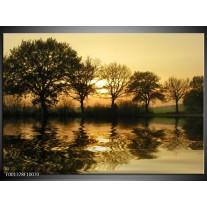 Glas schilderij Natuur   Zwart, Geel