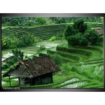 Glas schilderij Natuur | Groen, Wit,