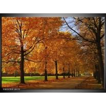 Foto canvas schilderij Bomen | Geel, Oranje