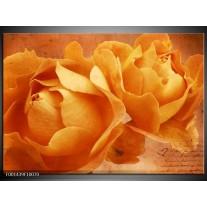 Glas schilderij Roos | Bruin, Oranje, Geel