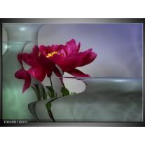 Glas schilderij Bloem | Rood, Grijs