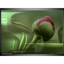 Glas schilderij Bloem | Groen, Paars