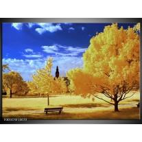 Glas schilderij Natuur | Geel, Blauw, Wit