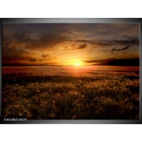 Glas schilderij Zonsondergang | Geel, Zwart, Bruin