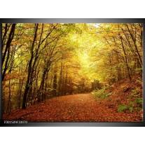 Foto canvas schilderij Natuur | Geel, Groen, Bruin
