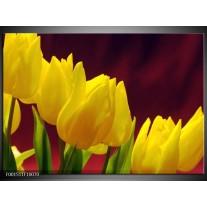 Foto canvas schilderij Tulpen | Geel, Bruin, Groen