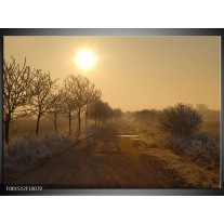 Glas schilderij Natuur | Bruin, Grijs, Sepia