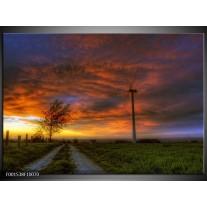 Glas schilderij Natuur | Geel, Grijs,