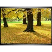Glas schilderij Natuur | Geel, Groen, Zwart