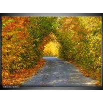 Foto canvas schilderij Natuur | Groen, Bruin, Grijs