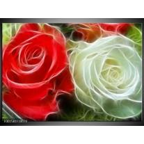 Foto canvas schilderij Roos | Wit, Rood,