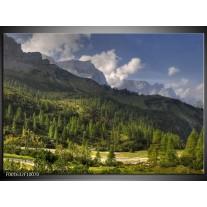 Foto canvas schilderij Bomen   Groen, Blauw, Wit