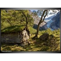 Glas schilderij Natuur | Groen, Grijs