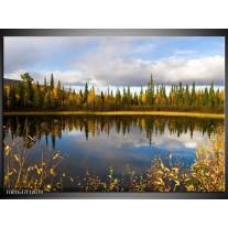 Glas schilderij Natuur | Blauw, Groen, Grijs