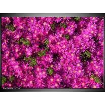 Glas schilderij Bloemen | Paars, Groen