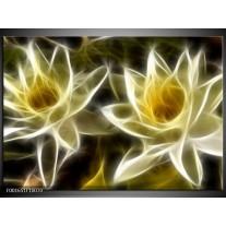 Glas schilderij Bloem | Geel, Wit, Zwart