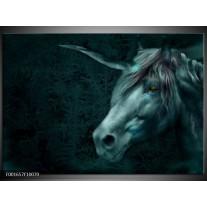 Glas schilderij Paard | Grijs, Wit