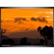 Glas schilderij Natuur | Geel, Oranje, Zwart