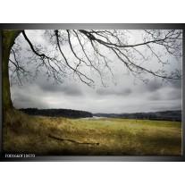 Glas schilderij Natuur | Grijs, Groen, Zwart