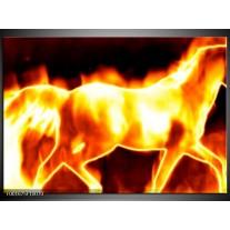 Glas schilderij Paard | Geel, Oranje, Zwart