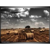 Foto canvas schilderij Natuur | Grijs, Zwart, Oranje